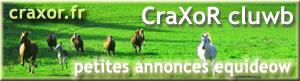 CraxorCluwb_annnonces.png